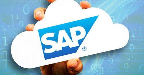 SAP (8)